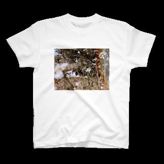 空気清浄機の居た(カラー) T-shirts