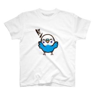 壁ドンインコ(ノーマルブルー) T-shirts