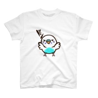 壁ドンインコ(白ハルクイン) T-shirts