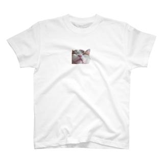 ねこのこたま T-shirts