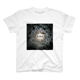 Co-Orbital Moon T-shirts