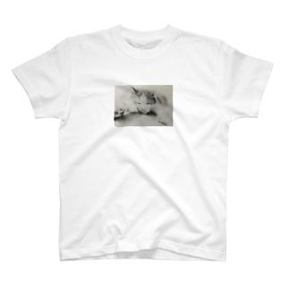 ヴァーチュウTシャツ T-shirts