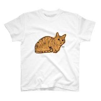 うちの猫 T-shirts