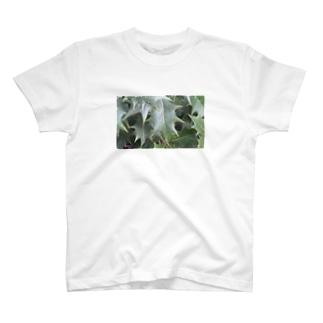 柊 T-shirts
