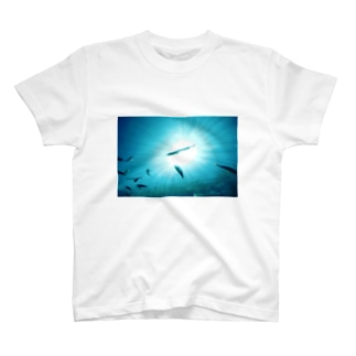 光とサカナ T-shirts