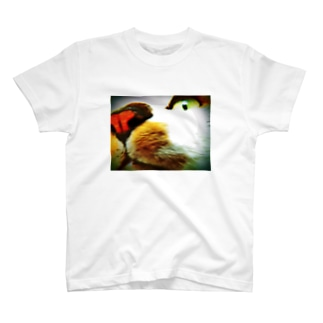 猫のハムくん(鼻) T-shirts