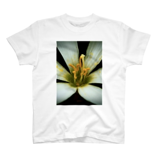 花弁(White) T-shirts
