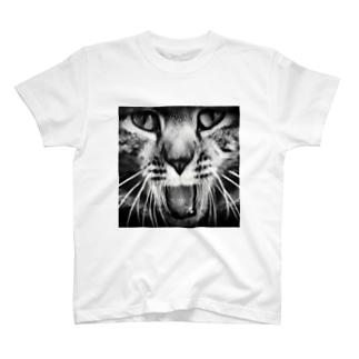 猫のポッキーくん(黒) T-shirts