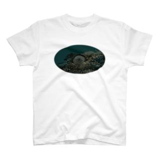 ワニの目 T-shirts