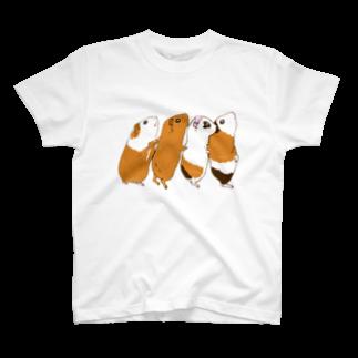 n555のチンアナゴモルモット T-shirts