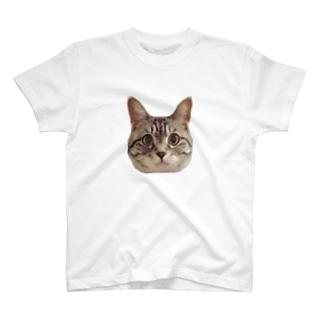 サバトラのももちゃん T-shirts