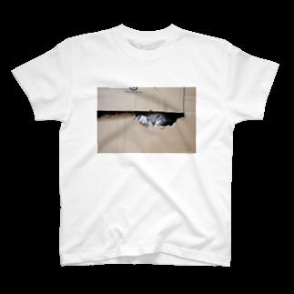 Aiko Nakanoのcat_20180529_3506' T-shirts
