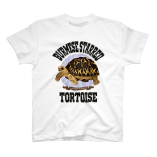 ビルマホシガメさん T-shirts