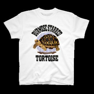 Rie HAYASHIのビルマホシガメさん T-shirts