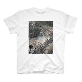 バリ島の「ゴフゥ」ってなってる石 T-shirts
