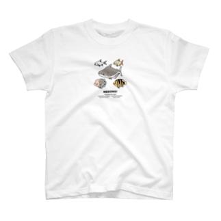 MEKONG! T-shirts
