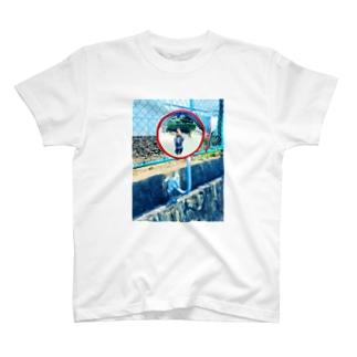 、 T-shirts