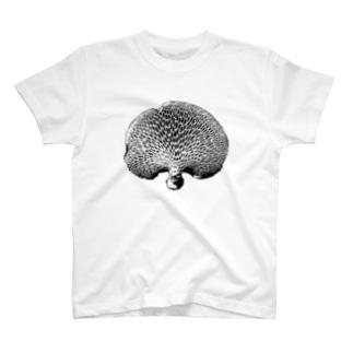 ハチノスタケ T-shirts
