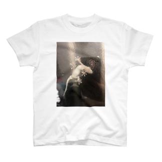 ヤモリ🦎 T-shirts
