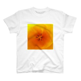 チューリップきいろ T-shirts