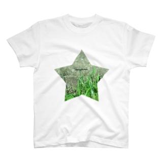 星と草と階段 T-shirts