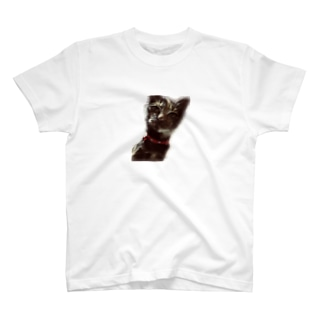 まぐちゃん T-shirts