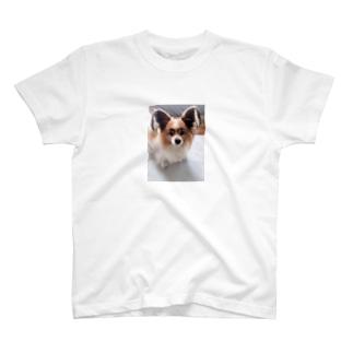 ミント2 T-shirts