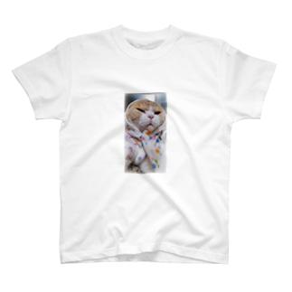 全画面バージョン*サンプル T-shirts