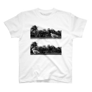 キジバトさん リアルモノトーン T-shirts