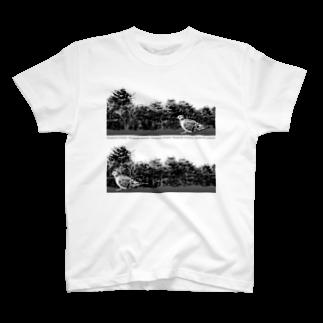 ポメ村ポメラニアンのキジバトさん リアルモノトーン T-shirts