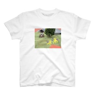 TIISANAASIATO T-shirts