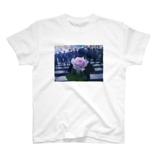 my rose T-shirts
