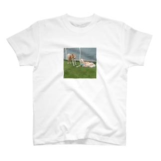 楽ちゃんさこっしゅ T-shirts
