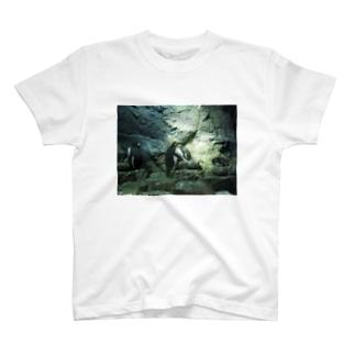 ペンギンT2 T-shirts