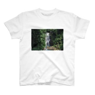 nasono-shirataki T-shirts
