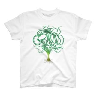 ミズクサT→クリナム アクアティカナローリーフ T-shirts