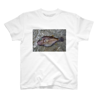 死んだ魚の目_キタマクラ_20180825_0648' T-shirts