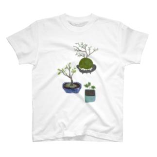 ボタニカル 鉢植えと苔玉 Tシャツ