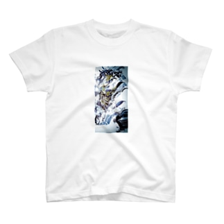 son's T-shirts