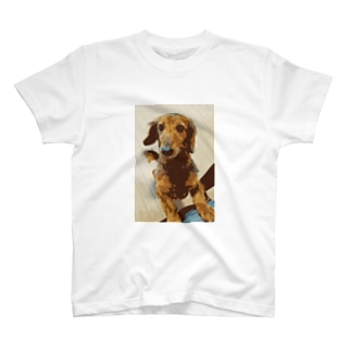 愛犬コナン T-shirts