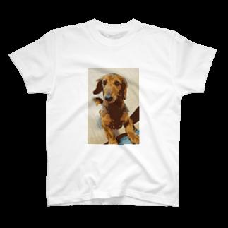谷中画廊の愛犬コナン T-shirts