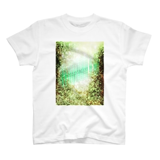 Temptation to light T-shirts