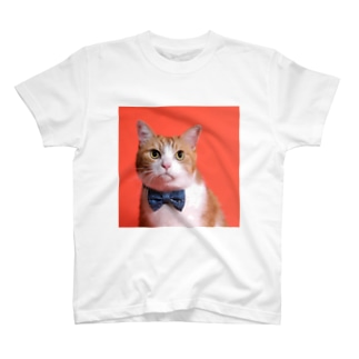 茶太郎 T-shirts