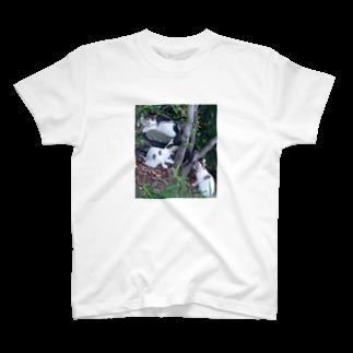 mimi23の猫の親子(^ ^) T-shirts