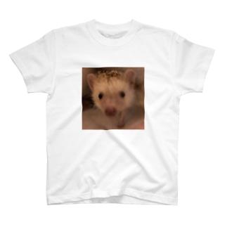こぶたちゃん T-shirts