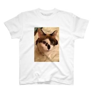 樽美酒あをい。のいつでも一緒きなこさん。 T-shirts