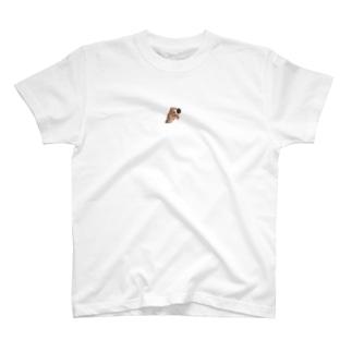 防犯カメラ T-shirts