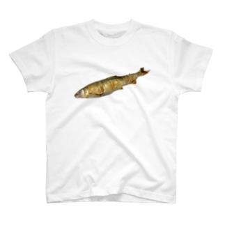 長良川の鮎 T-shirts