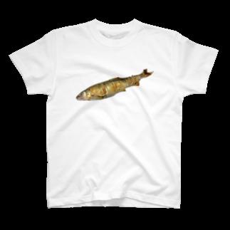 p53NMRの長良川の鮎 T-shirts