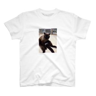 猫の日常 T-shirts